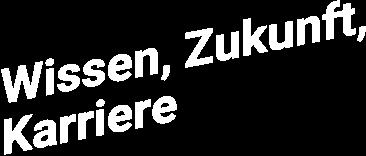 Mobile wikuka schriftzug de 2x 1